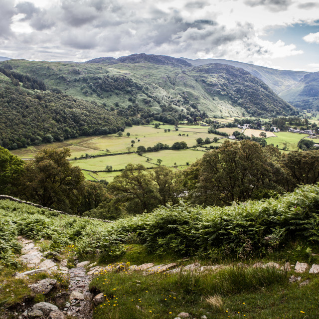 """Borrowdale, Cumbria"" stock image"
