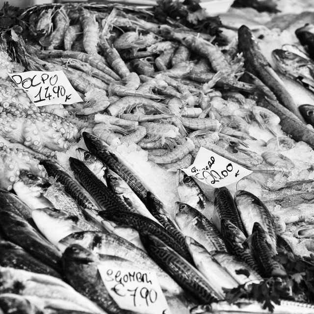 """""""Black and White image of fresh fish and seafood on street market"""" stock image"""