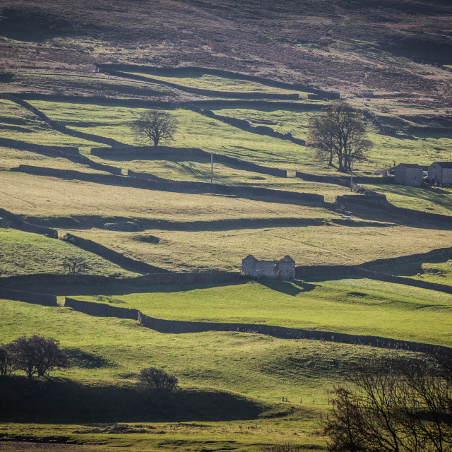 """Swaledale Patchwork"" stock image"