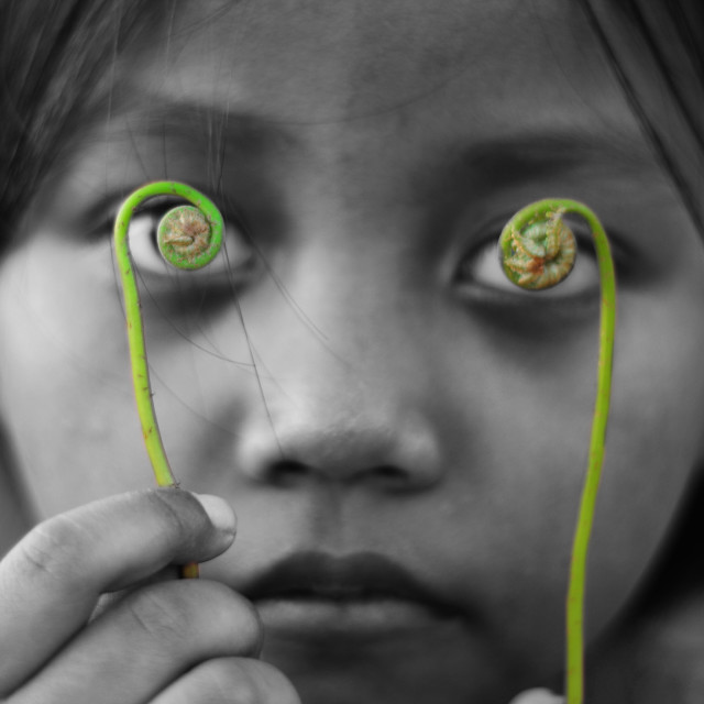 """""""A girl with spiral fern at eyes"""" stock image"""