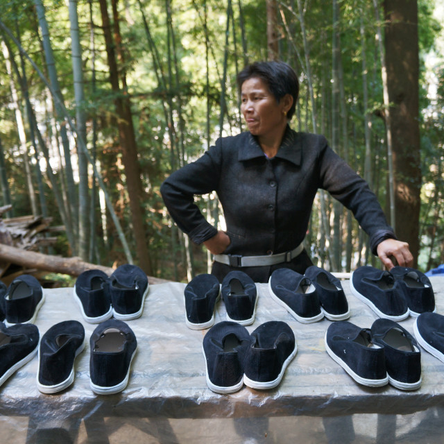 """Chinese Shoes"" stock image"