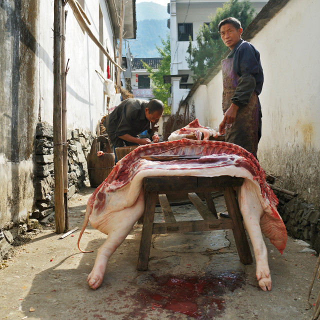 """Chinese Butcher"" stock image"