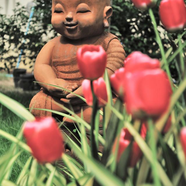 """Buddhist Flowers"" stock image"