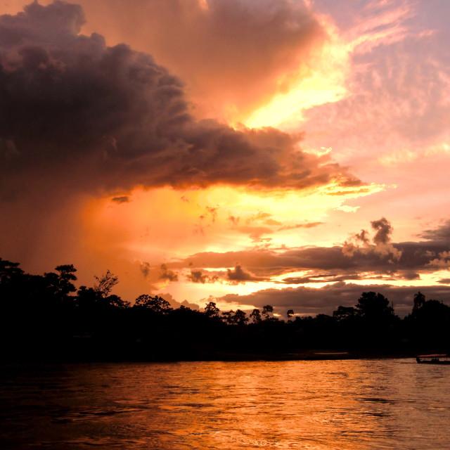 """Amazon River Crossing"" stock image"