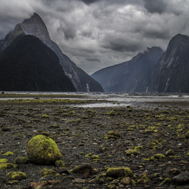 """Milford Sound"" stock image"