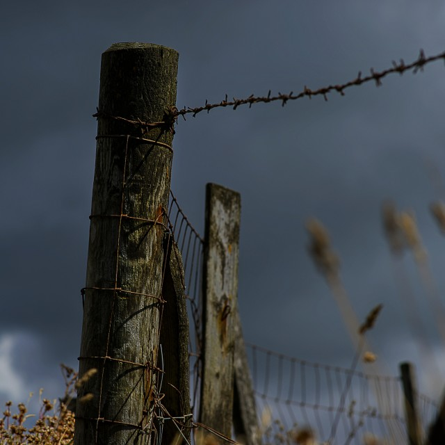 """Fence Post."" stock image"