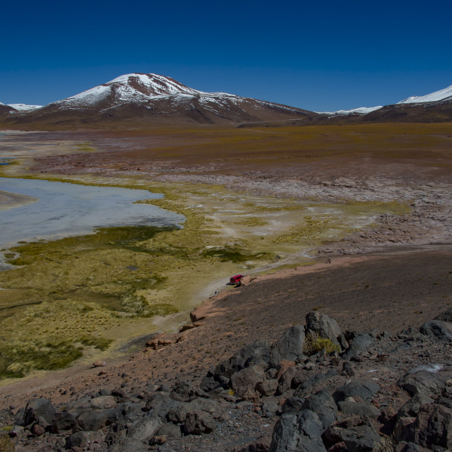 """Chilean lagoon at the altitude of 4,400 m"" stock image"