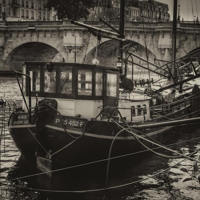 """Maigret et la Seine"" stock image"