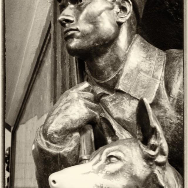 """Bulgakov Heart of a dog"" stock image"
