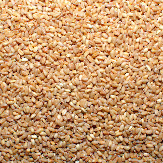 """Wheat Grain Seeds"" stock image"