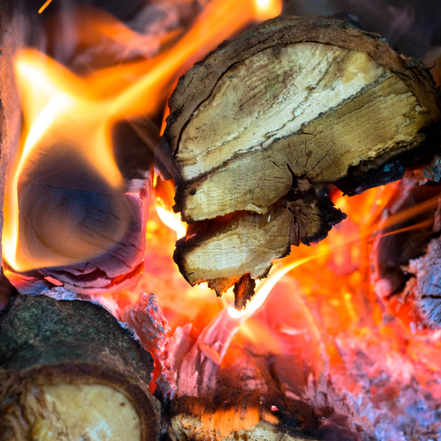 """Wood in fire"" stock image"