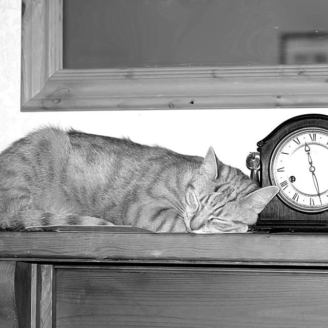 """Bedtime"" stock image"
