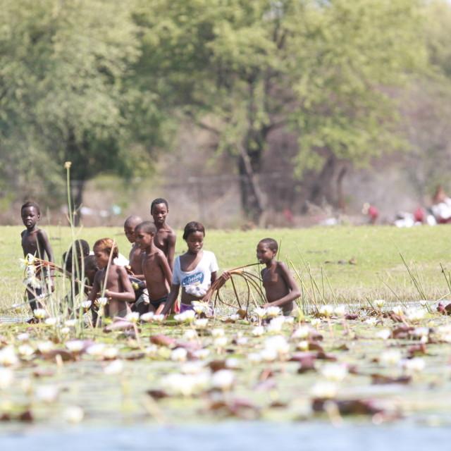 """""""Children in Botswana Swamp"""" stock image"""