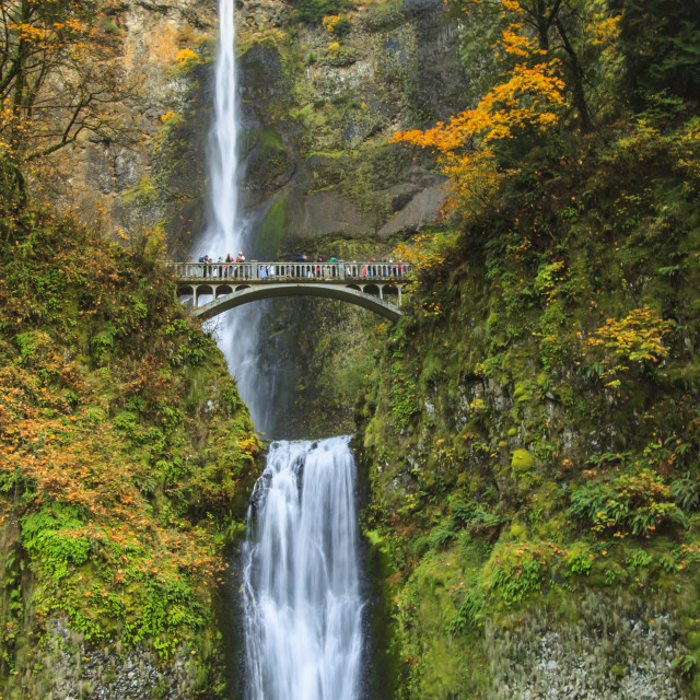 """""""Multnomah Falls"""" stock image"""