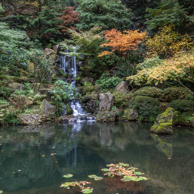 """Japanese Garden waterfall"" stock image"