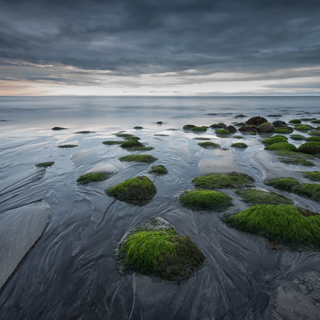 """""""green stepping stones"""" stock image"""