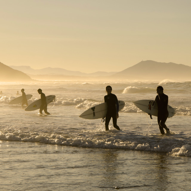 """Surfers leaving the waves behind"" stock image"
