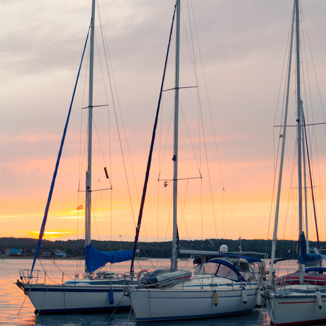 """Sunset with Sailboats Vertical"" stock image"