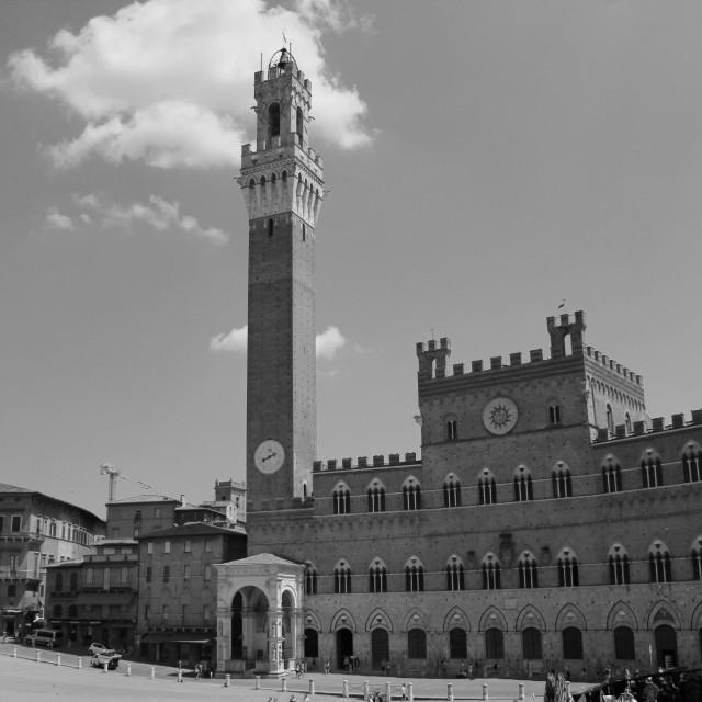 """Siena 'La Belle'"" stock image"