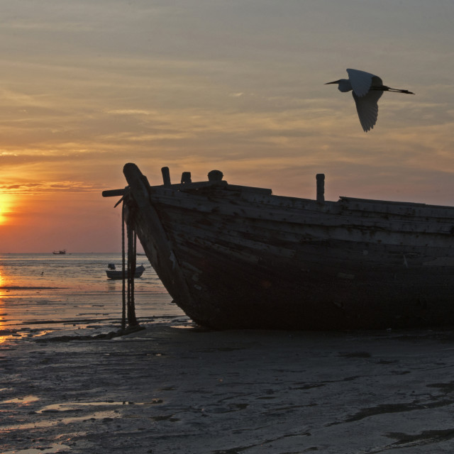 """Sunset Boat & Egret"" stock image"