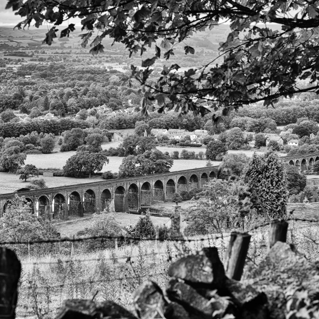 """Whalley Viaduct, Ribble Valley 2 B&W"" stock image"