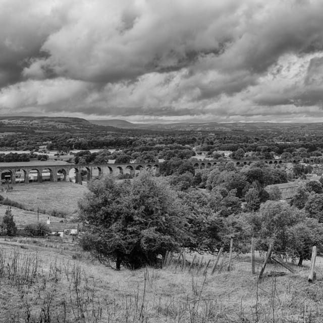 """Whalley Viaduct, Ribble Valley B&W"" stock image"