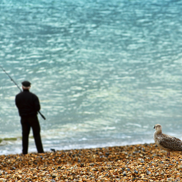 """Man Fishing off the Beach"" stock image"