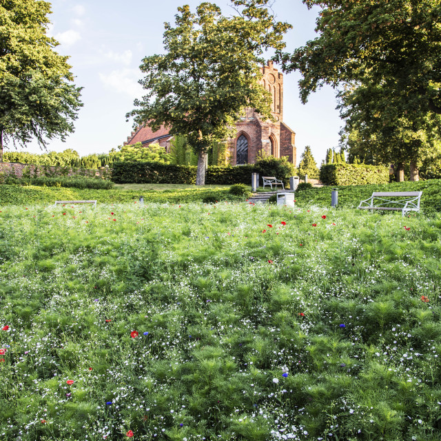 """""""Meadow in city"""" stock image"""