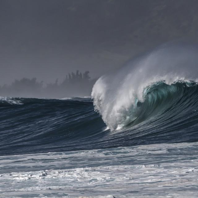 """""""North shore Ocean Wave"""" stock image"""
