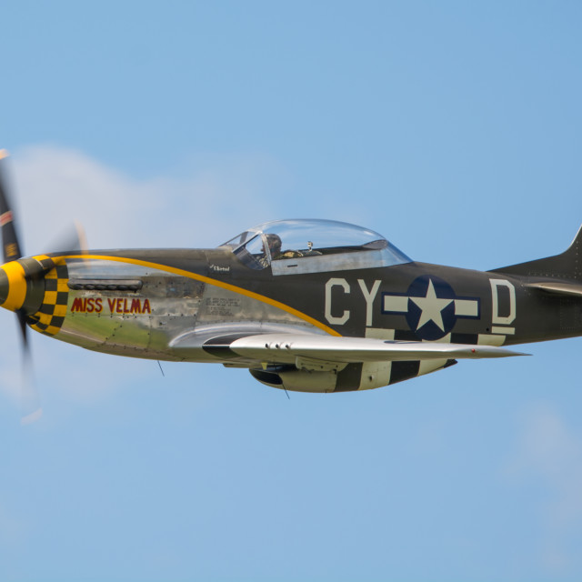 """P-51D Mustang, Miss Velma"" stock image"