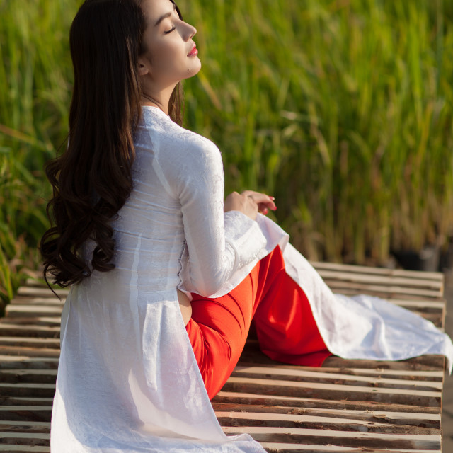 """Vietnamese girl wearing Ao dai"" stock image"