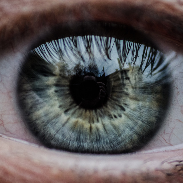 """Eye"" stock image"