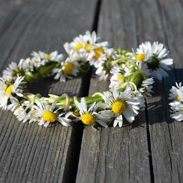 """Daisy wreath"" stock image"