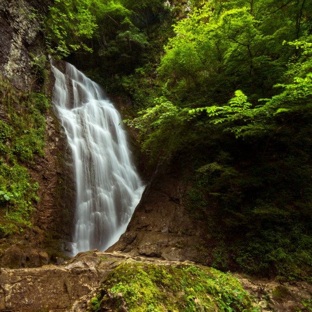 """Waterfall in the mountain"" stock image"