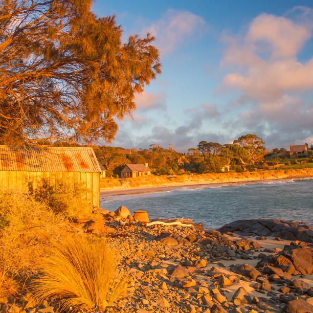 """""""Boatshed at Sunset 6"""" stock image"""