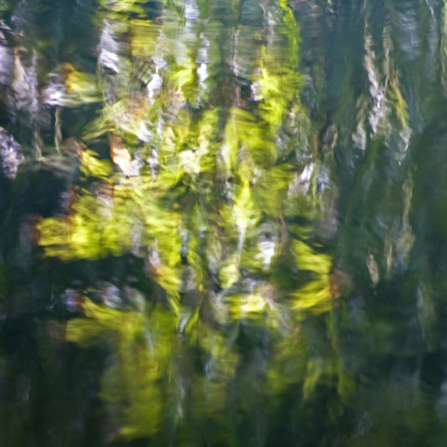 """""""Abstract Reflections"""" stock image"""