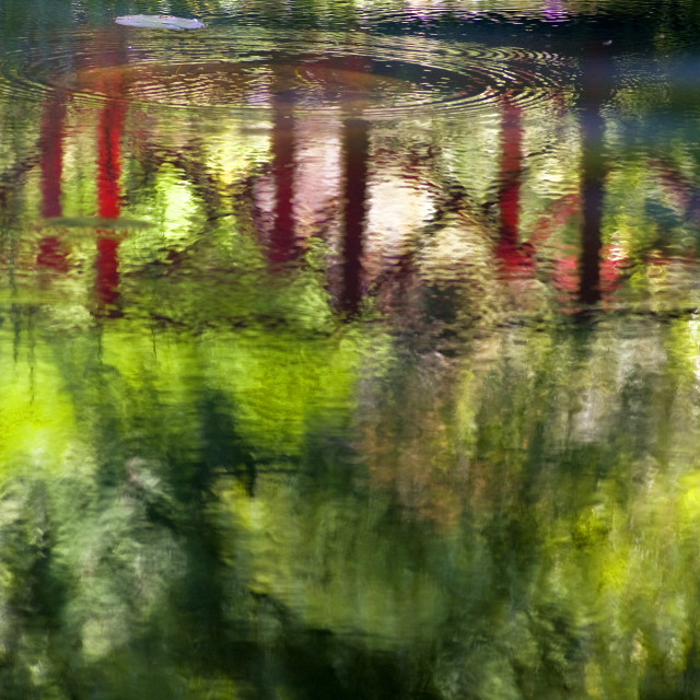"""""""Reflections in a Japanese Water Garden"""" stock image"""