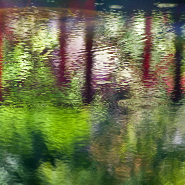 """""""Streamside Reflections"""" stock image"""
