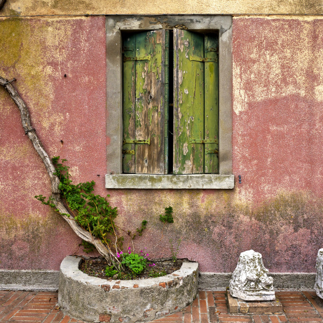 """The House with Green Shutters"" stock image"
