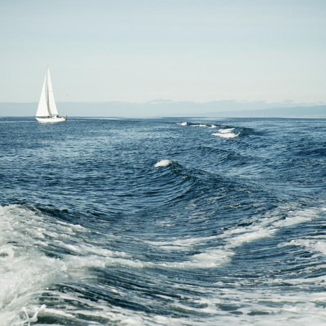 """Sailboat and wake"" stock image"