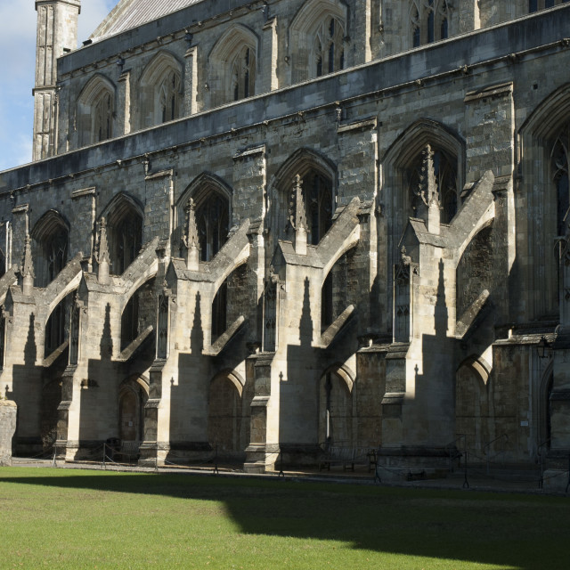 """Winchester Cathedral flying buttresses"" stock image"