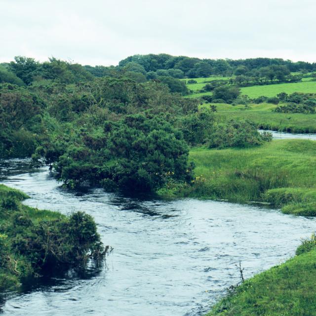 """De Lank River, Bodmin"" stock image"
