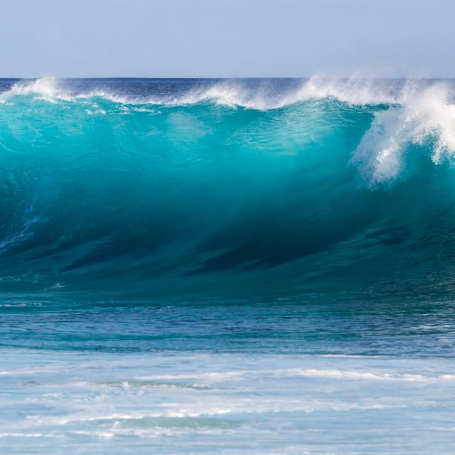 """""""Bodyboarding in Hawaii"""" stock image"""