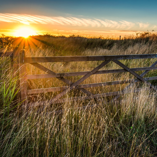 """Sunset behind the gate"" stock image"