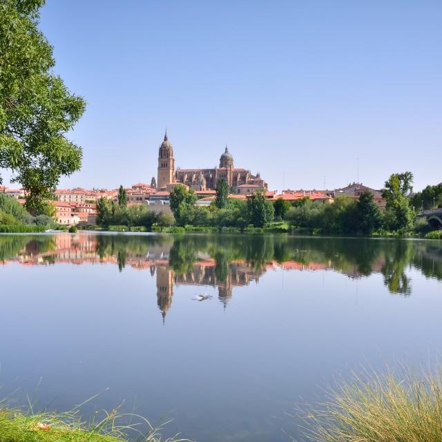 """Salamanca cathedral."" stock image"