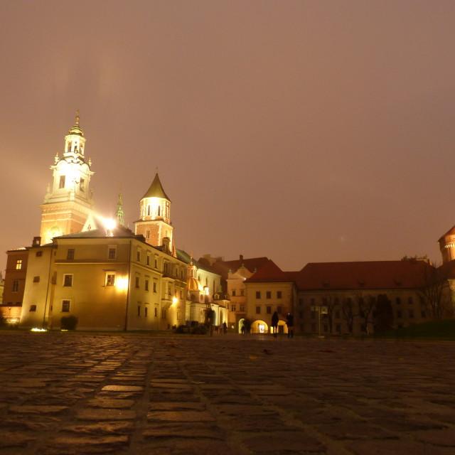 """""""Wawel Royal Castle by night ~ Krakow"""" stock image"""