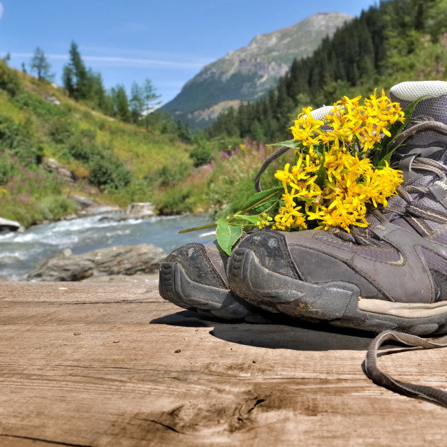 """hiking shoes"" stock image"