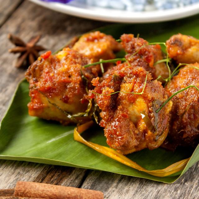 """""""Rendang Ayam (Chicken Rendang)"""" stock image"""