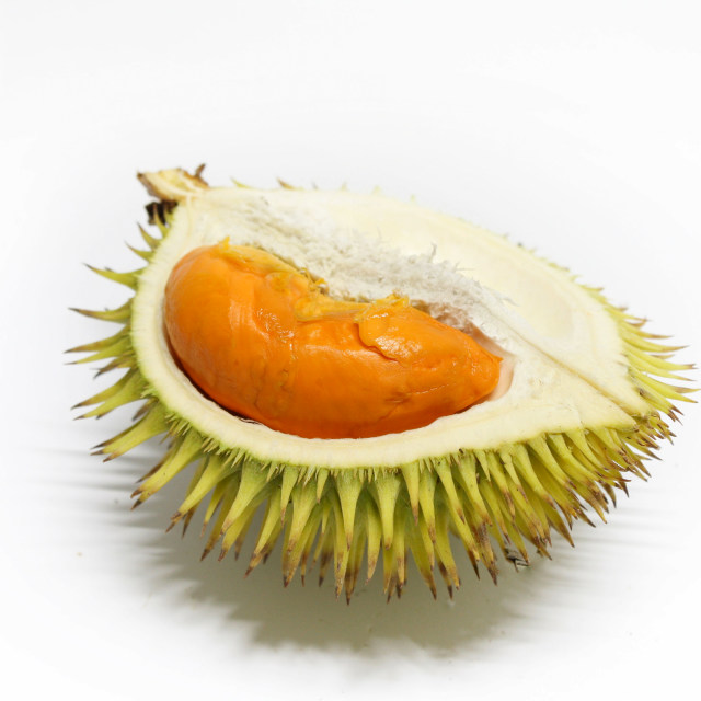 """""""Durian"""" stock image"""