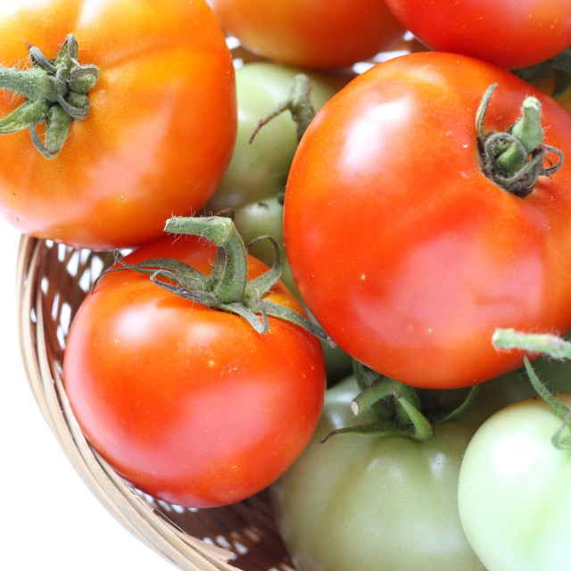 """Fresh Tomatoes"" stock image"